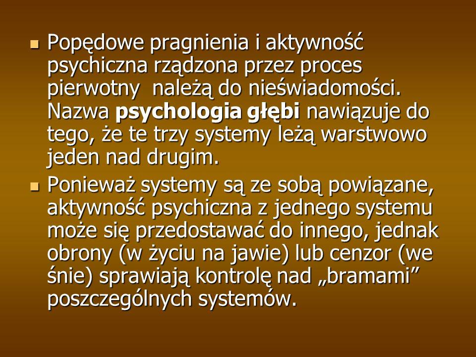 Popędowe pragnienia i aktywność psychiczna rządzona przez proces pierwotny należą do nieświadomości. Nazwa psychologia głębi nawiązuje do tego, że te trzy systemy leżą warstwowo jeden nad drugim.