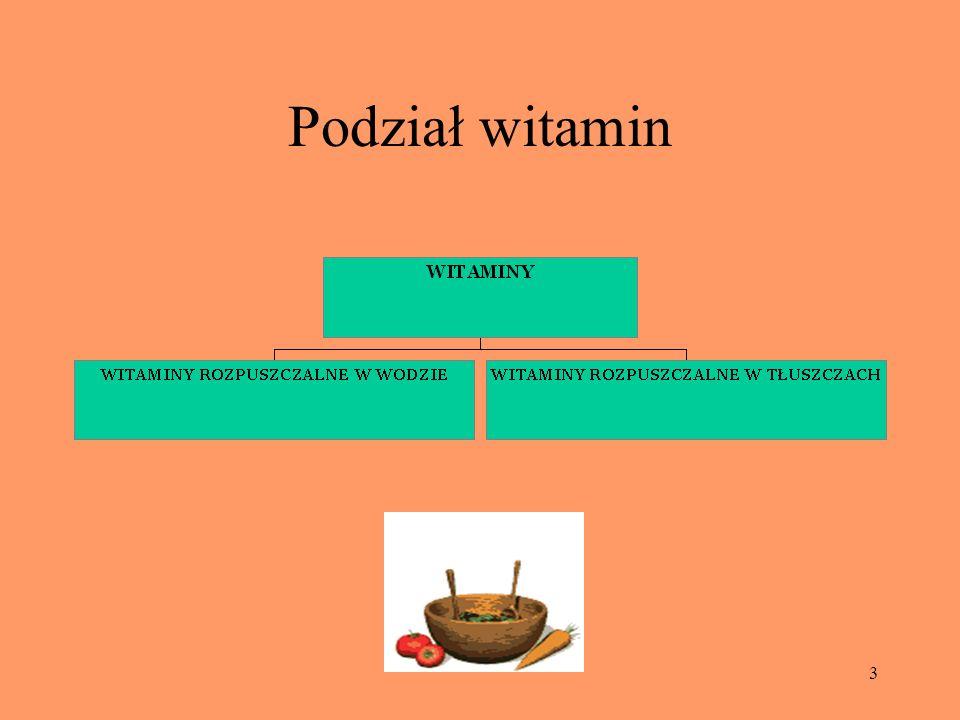 Podział witamin