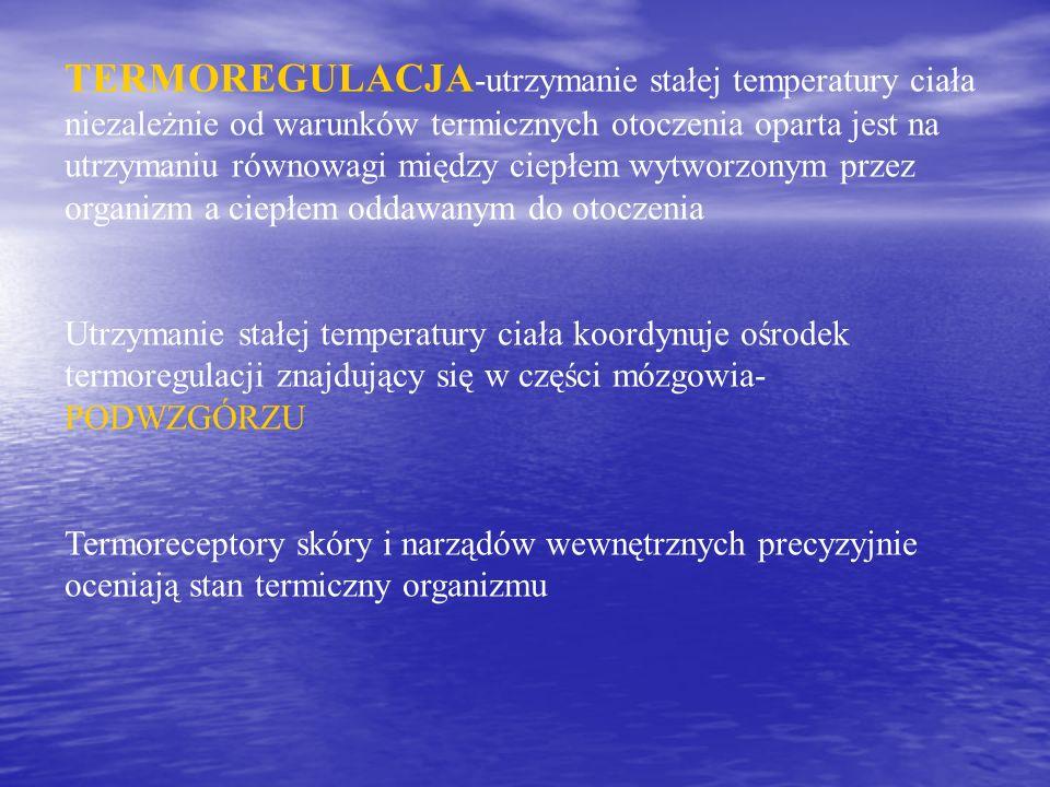 TERMOREGULACJA-utrzymanie stałej temperatury ciała niezależnie od warunków termicznych otoczenia oparta jest na utrzymaniu równowagi między ciepłem wytworzonym przez organizm a ciepłem oddawanym do otoczenia