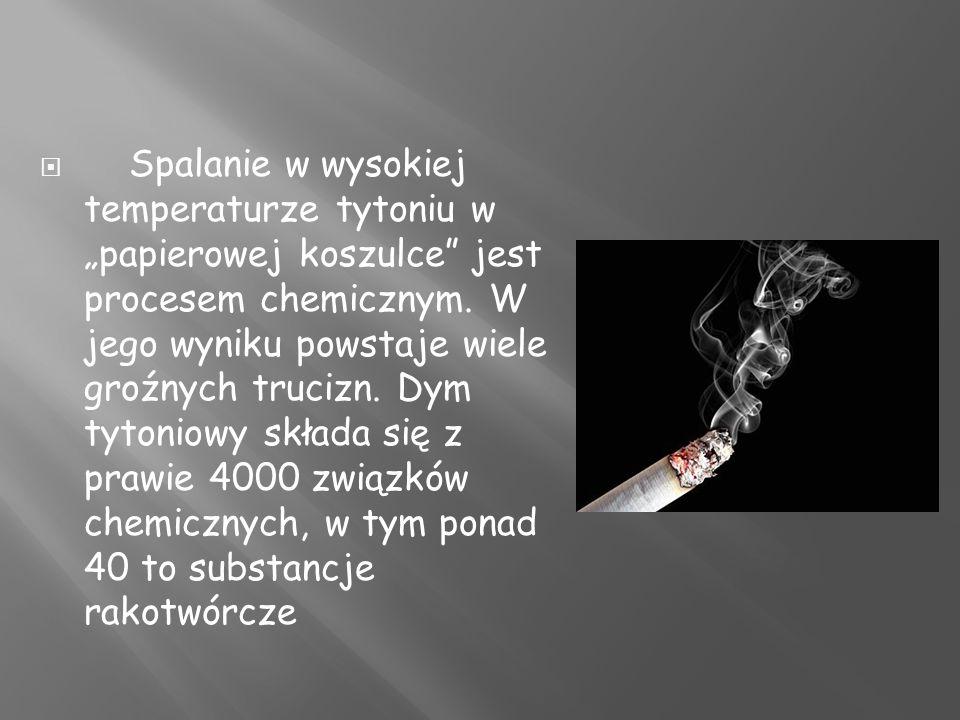 """Spalanie w wysokiej temperaturze tytoniu w """"papierowej koszulce jest procesem chemicznym."""