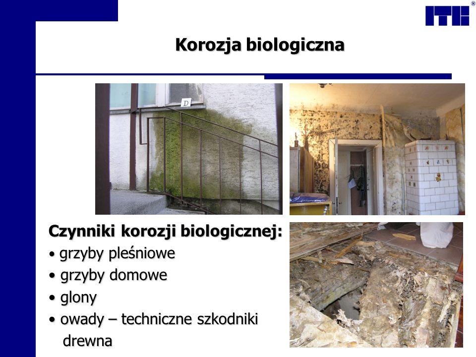 Korozja biologiczna Czynniki korozji biologicznej: grzyby domowe glony