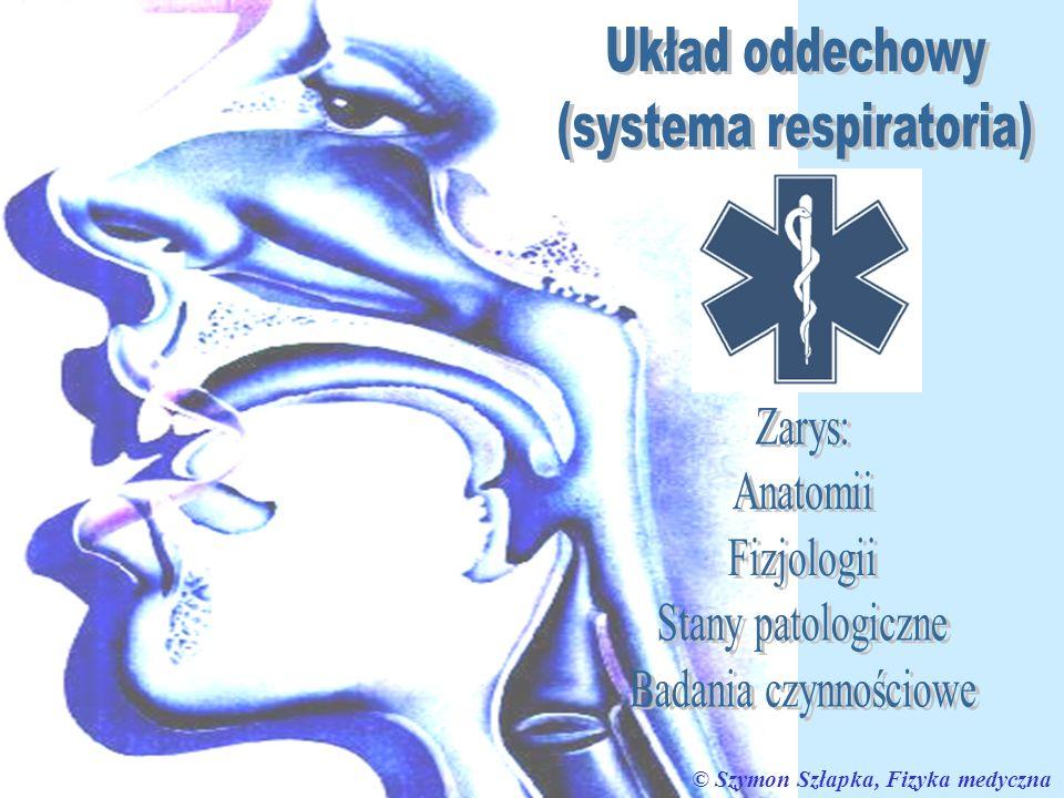 (systema respiratoria)