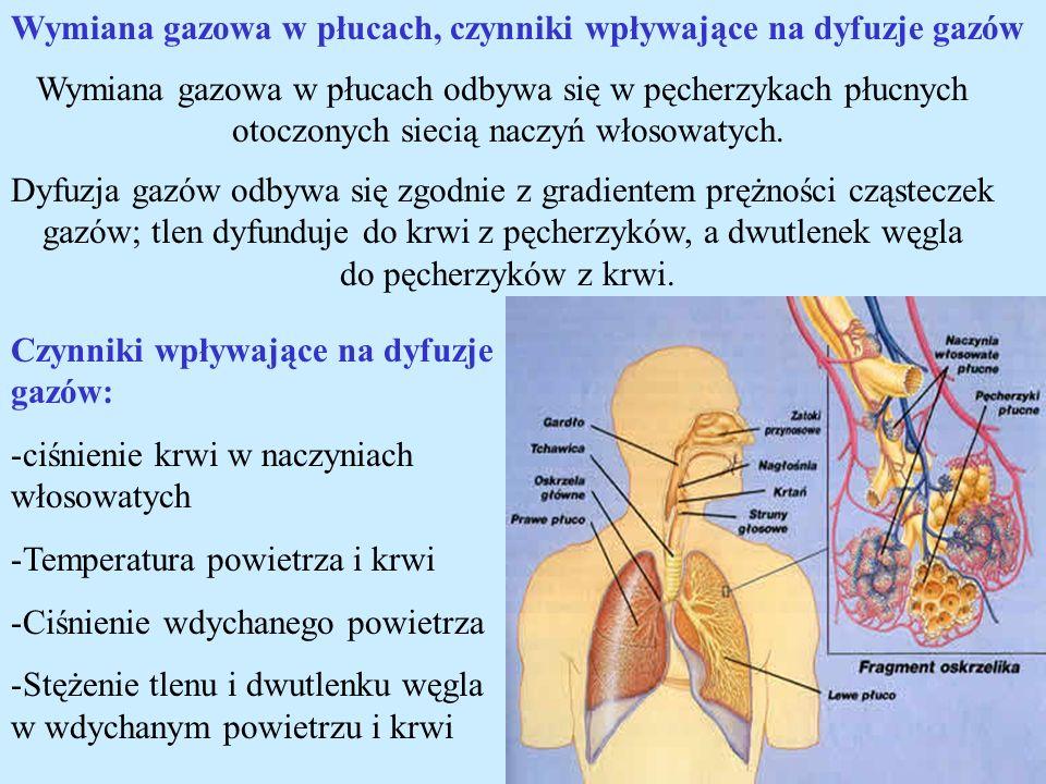 Wymiana gazowa w płucach, czynniki wpływające na dyfuzje gazów