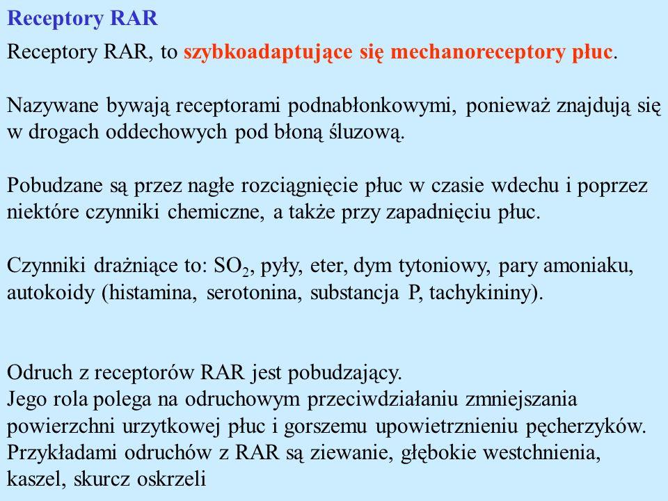 Receptory RAR Receptory RAR, to szybkoadaptujące się mechanoreceptory płuc.