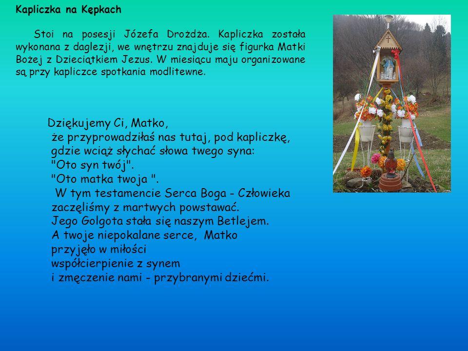 Kapliczka na Kępkach