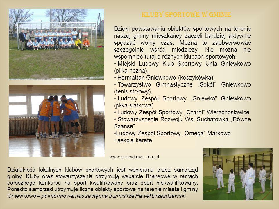 Kluby sportowe w gminie