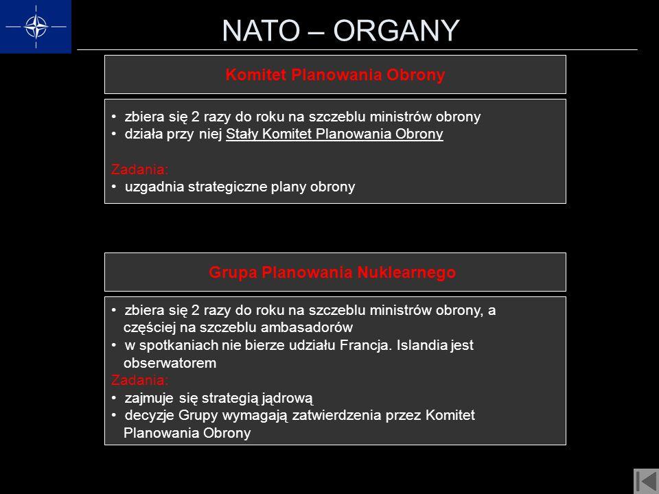 Komitet Planowania Obrony Grupa Planowania Nuklearnego