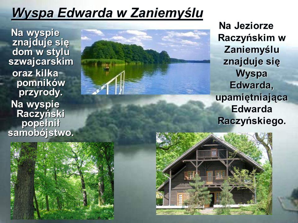 Wyspa Edwarda w Zaniemyślu