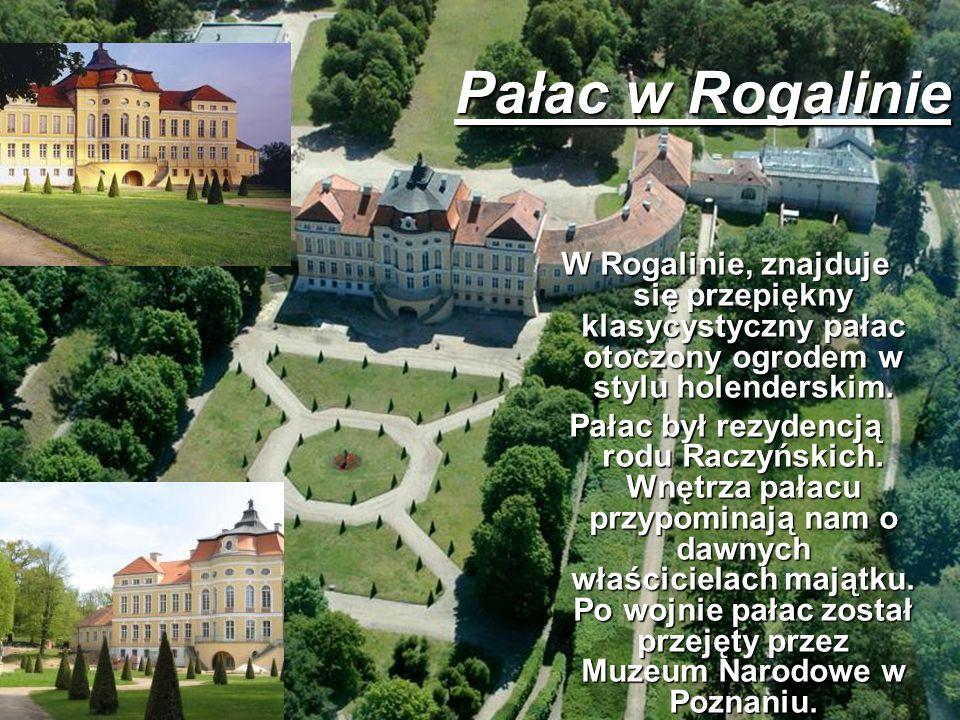 Pałac w Rogalinie W Rogalinie, znajduje się przepiękny klasycystyczny pałac otoczony ogrodem w stylu holenderskim.