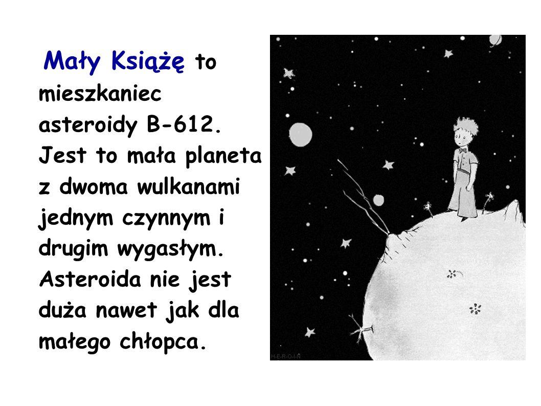 Mały Książę to mieszkaniec asteroidy B-612