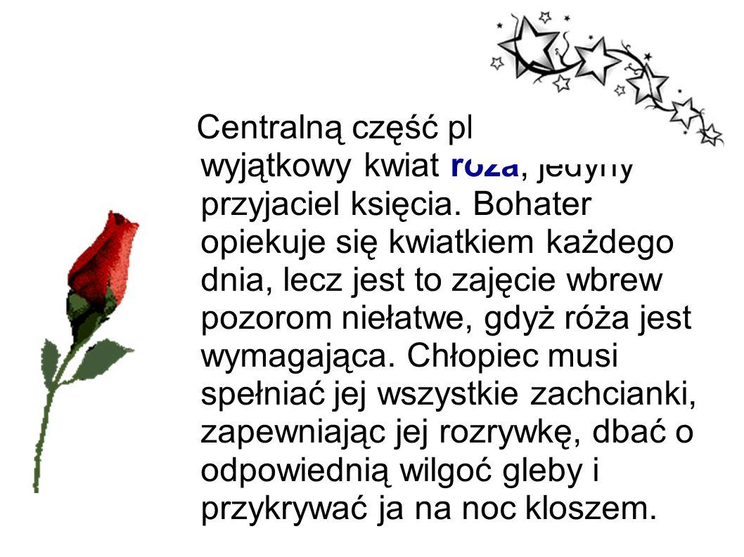Centralną część planety zajmuje wyjątkowy kwiat róża, jedyny przyjaciel księcia.