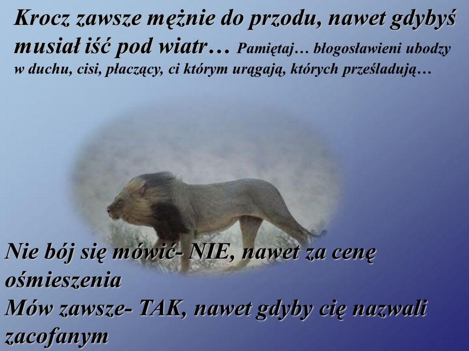 Krocz zawsze mężnie do przodu, nawet gdybyś musiał iść pod wiatr… Pamiętaj… błogosławieni ubodzy w duchu, cisi, płaczący, ci którym urągają, których prześladują…