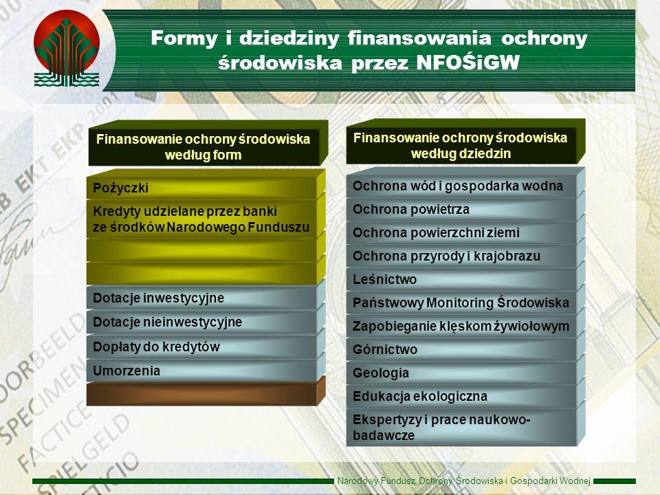 Formy i dziedziny finansowania ochrony środowiska przez NFOŚiGW