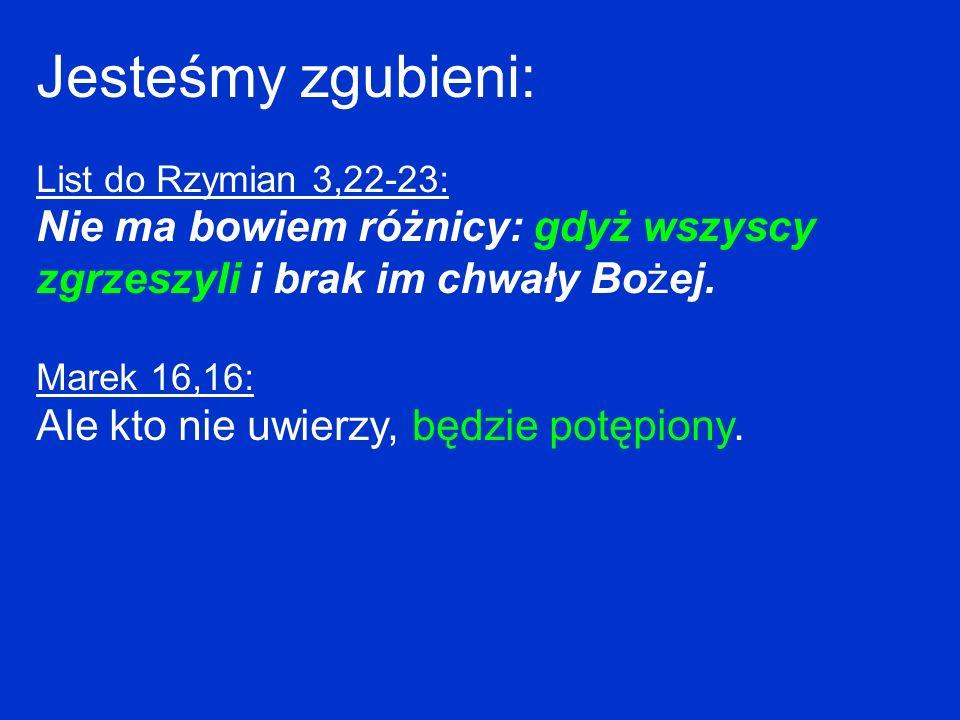Jesteśmy zgubieni: List do Rzymian 3,22-23: Nie ma bowiem różnicy: gdyż wszyscy zgrzeszyli i brak im chwały Bożej.