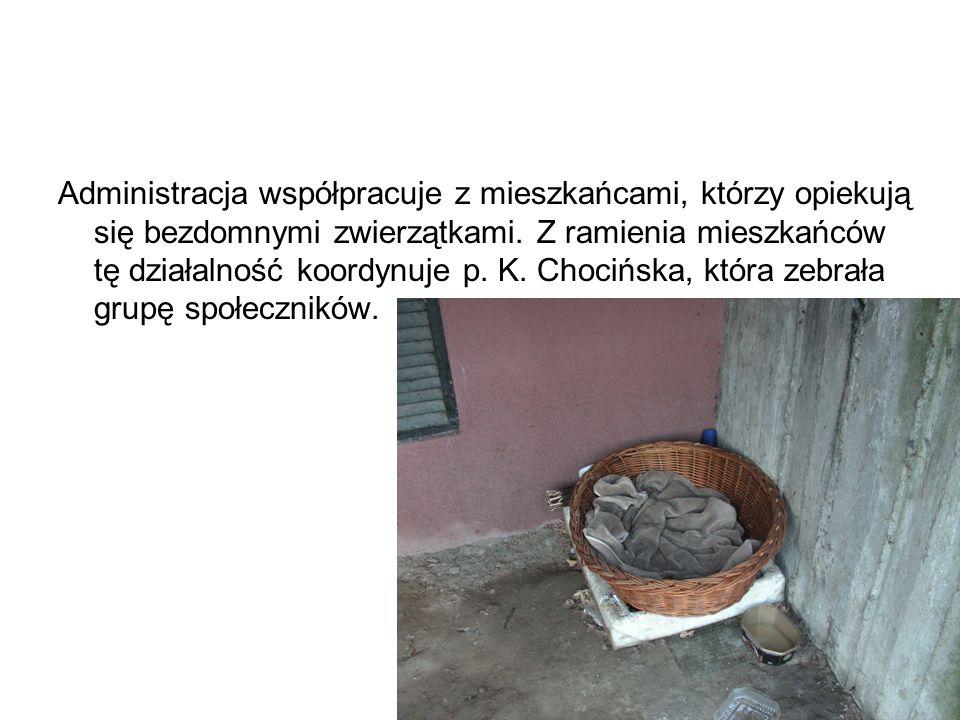 Administracja współpracuje z mieszkańcami, którzy opiekują się bezdomnymi zwierzątkami.