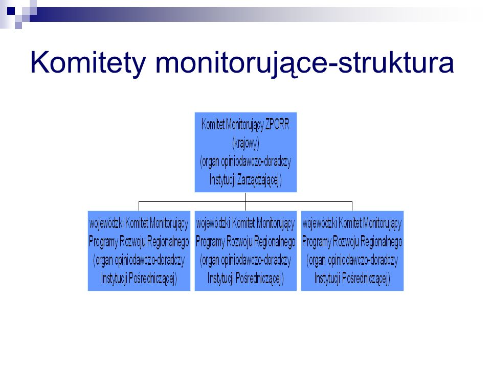 Komitety monitorujące-struktura