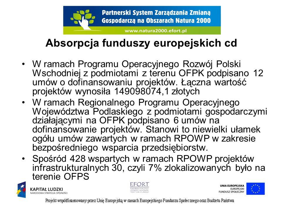 Absorpcja funduszy europejskich cd