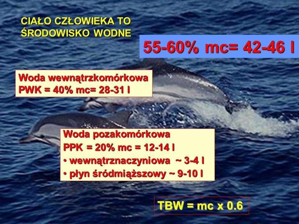 55-60% mc= 42-46 l TBW = mc x 0.6 CIAŁO CZŁOWIEKA TO ŚRODOWISKO WODNE