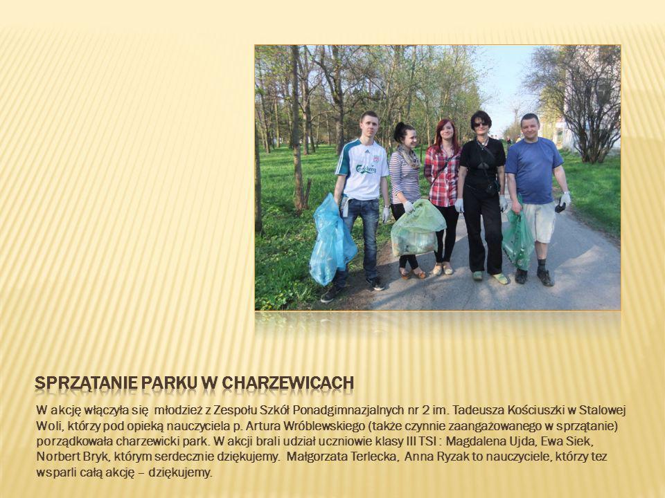 Sprzątanie parku w charzewicach