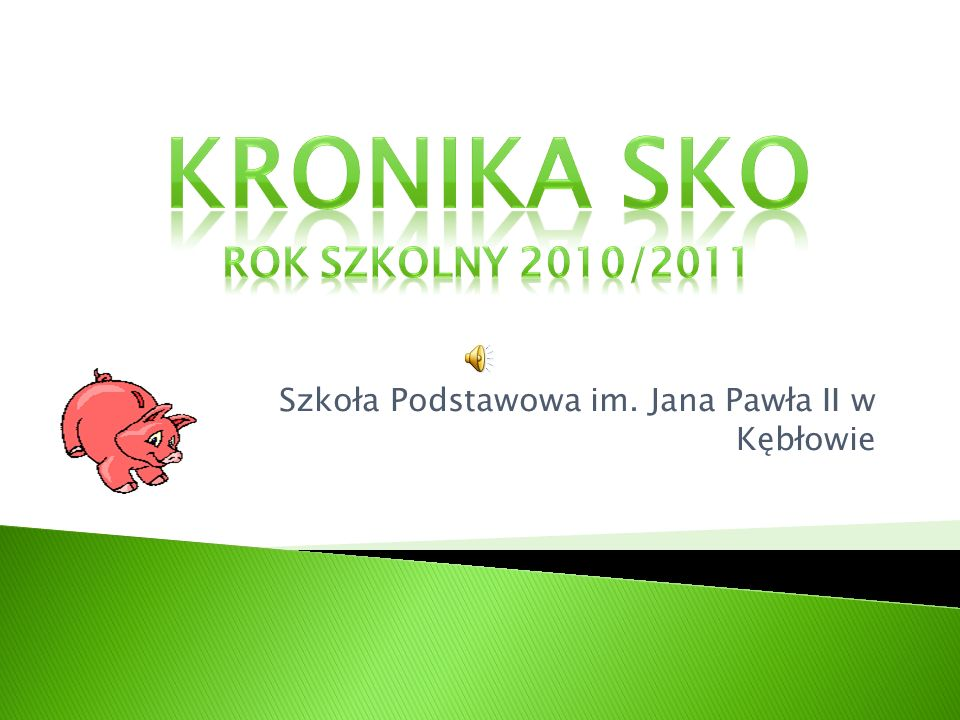 Kronika SKO rok szkolny 2010/2011