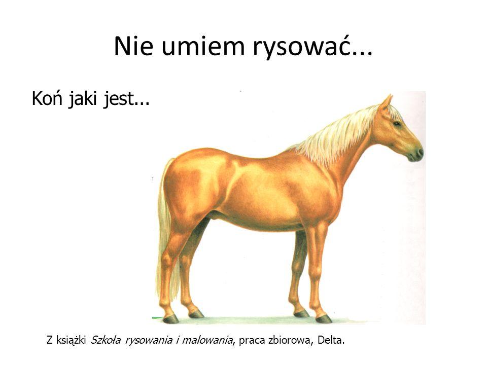 Nie umiem rysować... Koń jaki jest...