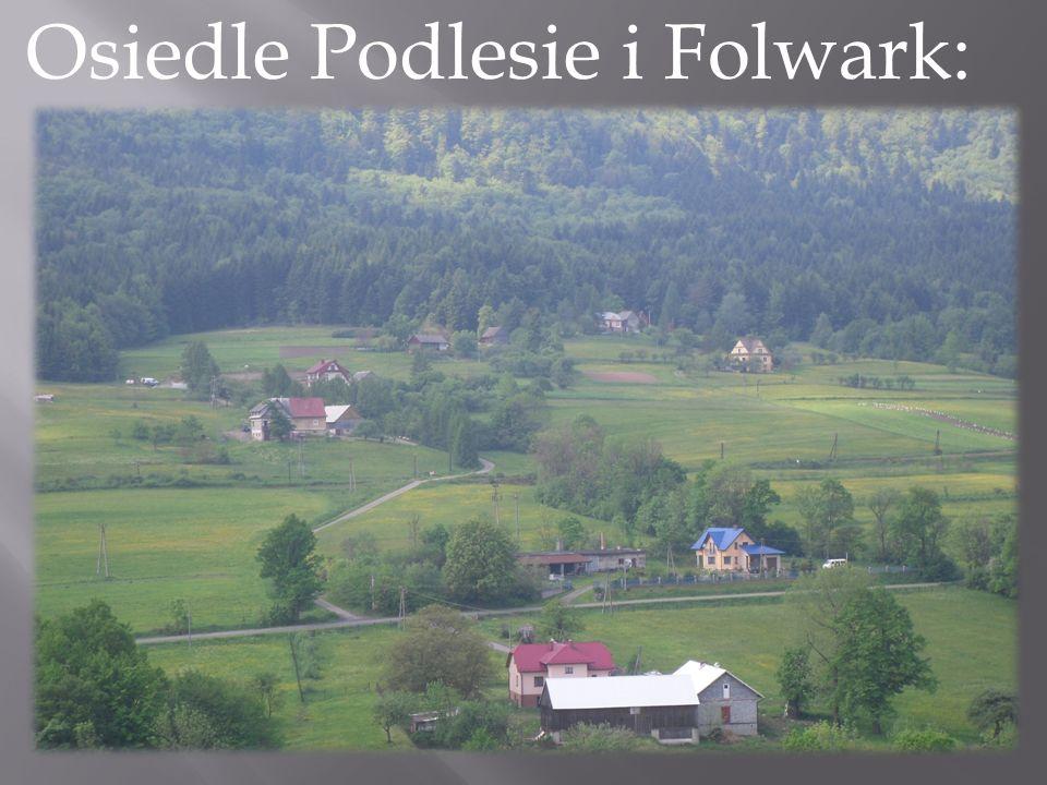 Osiedle Podlesie i Folwark: