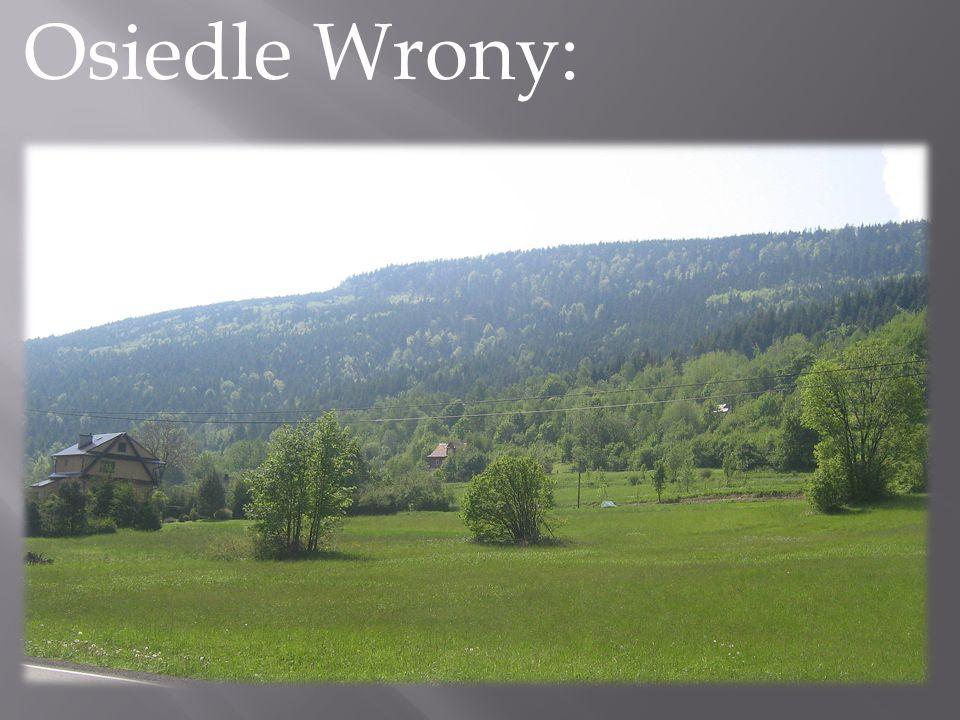 Osiedle Wrony: