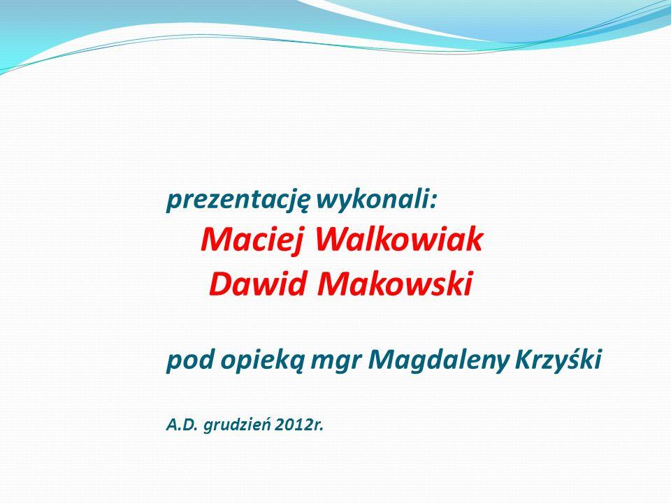 prezentację wykonali: Maciej Walkowiak Dawid Makowski pod opieką mgr Magdaleny Krzyśki A.D.