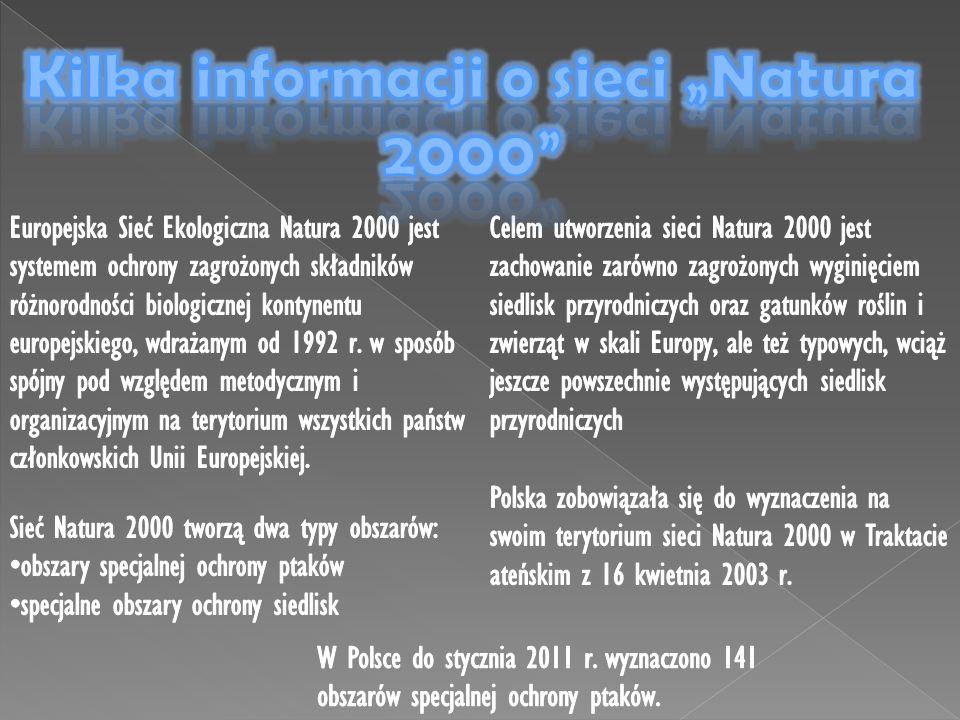 """Kilka informacji o sieci """"Natura 2000"""