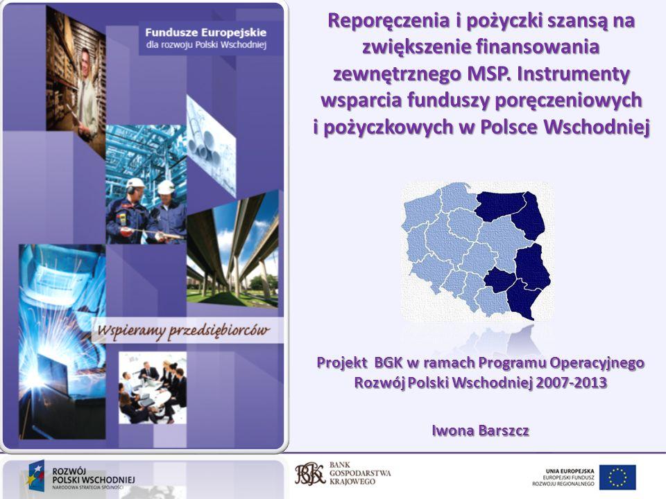 Reporęczenia i pożyczki szansą na zwiększenie finansowania zewnętrznego MSP. Instrumenty wsparcia funduszy poręczeniowych i pożyczkowych w Polsce Wschodniej