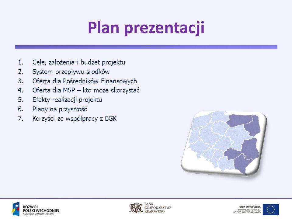 Plan prezentacji Cele, założenia i budżet projektu