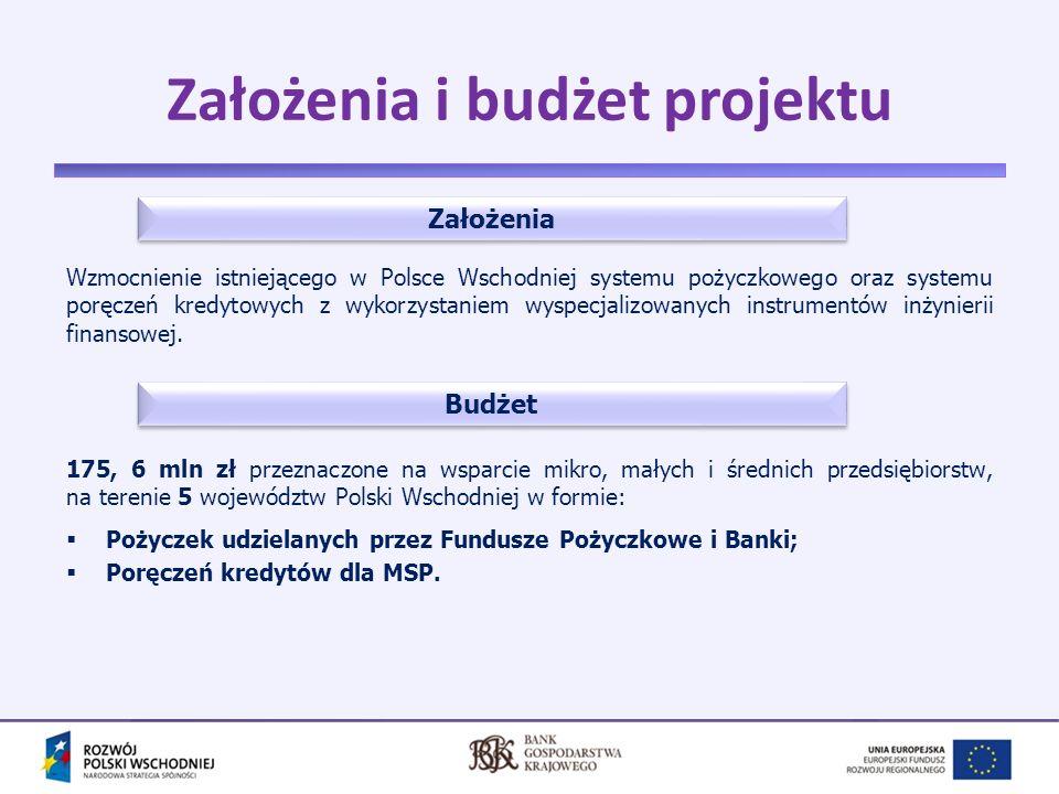 Założenia i budżet projektu