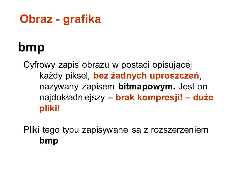 Obraz - grafika bmp.