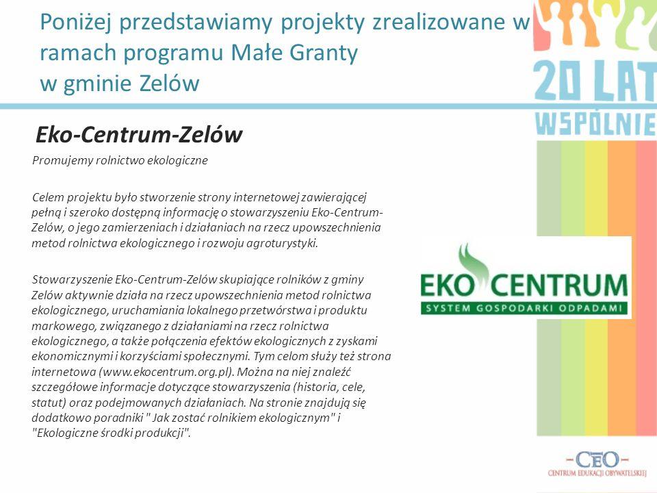 Poniżej przedstawiamy projekty zrealizowane w ramach programu Małe Granty w gminie Zelów