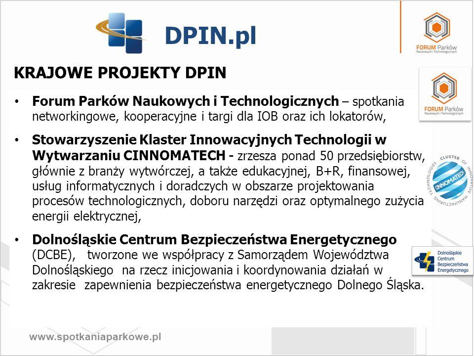 DPIN.pl KRAJOWE PROJEKTY DPIN