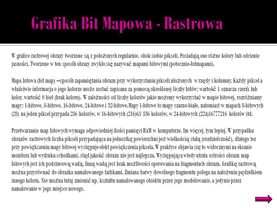 Grafika Bit Mapowa - Rastrowa