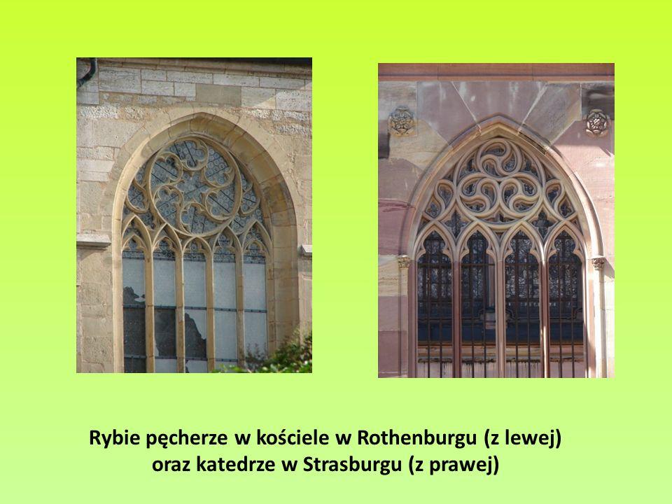 Rybie pęcherze w kościele w Rothenburgu (z lewej) oraz katedrze w Strasburgu (z prawej)