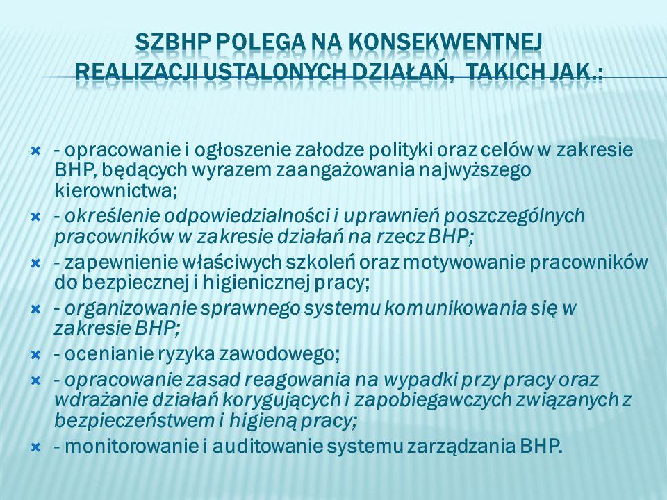 SZBHP polega na konsekwentnej realizacji ustalonych działań, takich jak.: