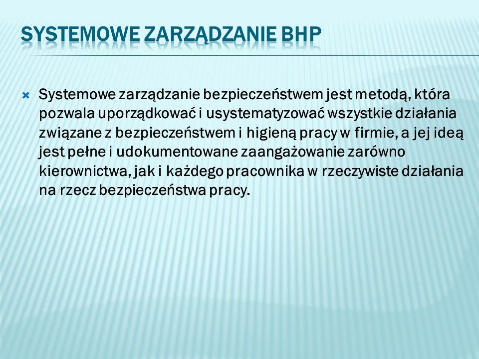 Systemowe zarządzanie BHP