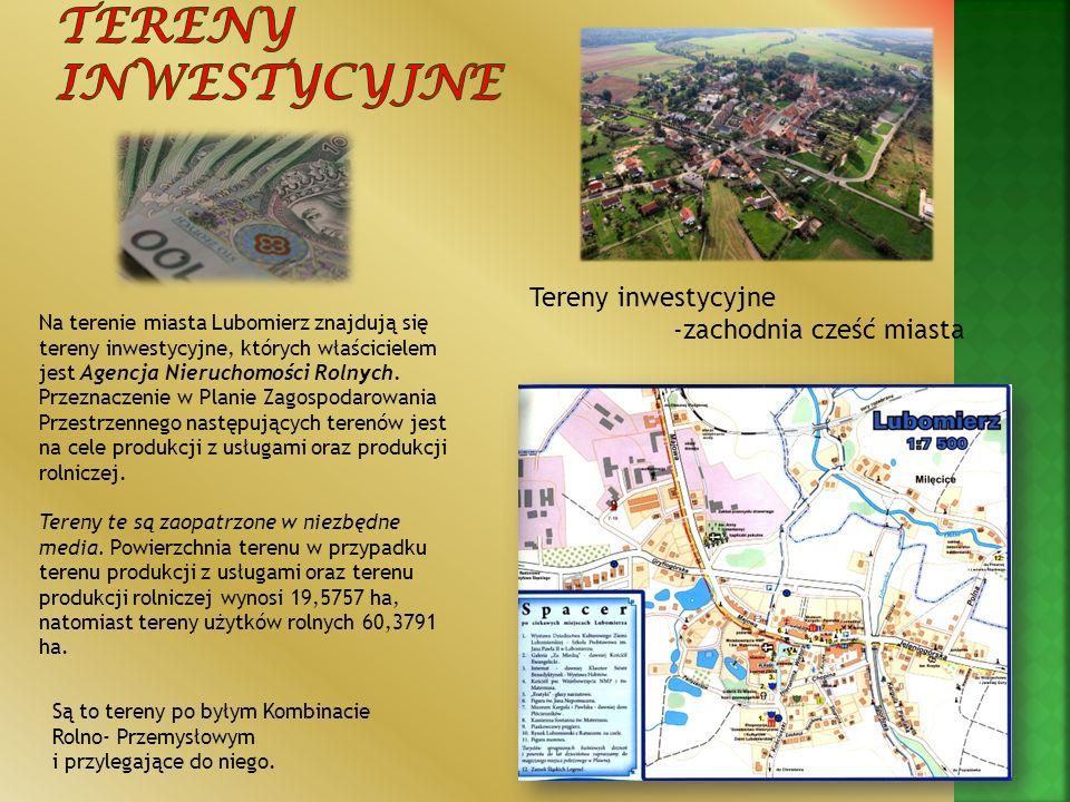Tereny inwestycyjne Tereny inwestycyjne -zachodnia cześć miasta