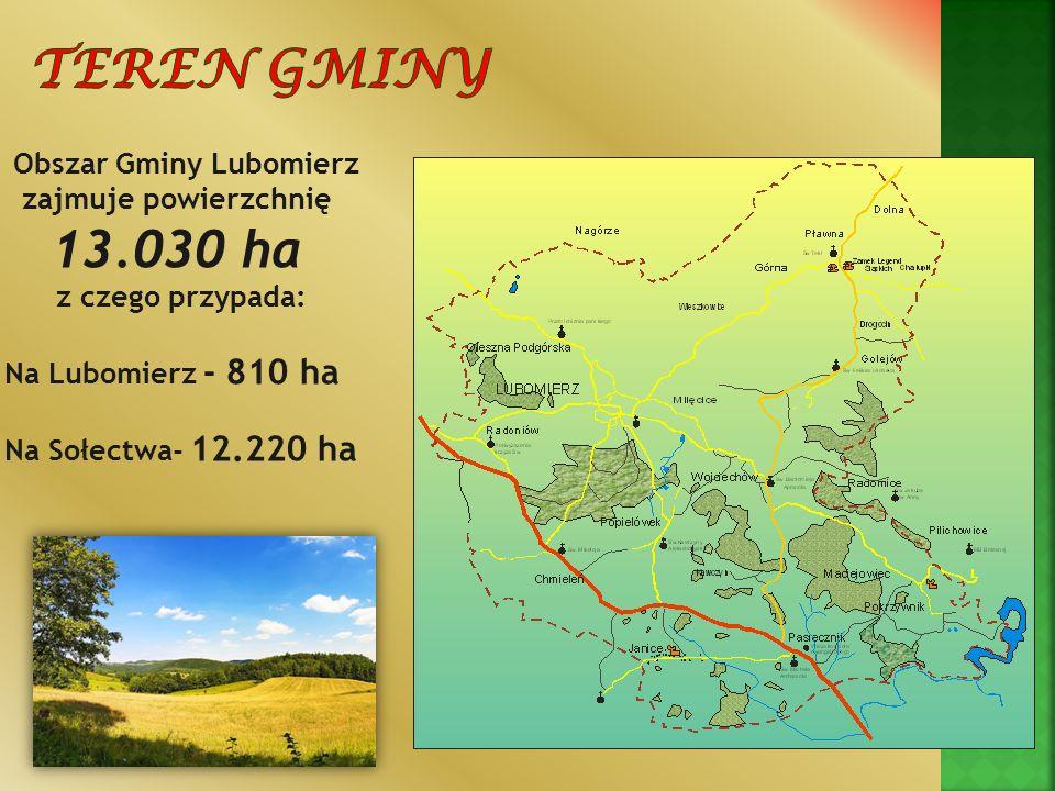 Obszar Gminy Lubomierz zajmuje powierzchnię