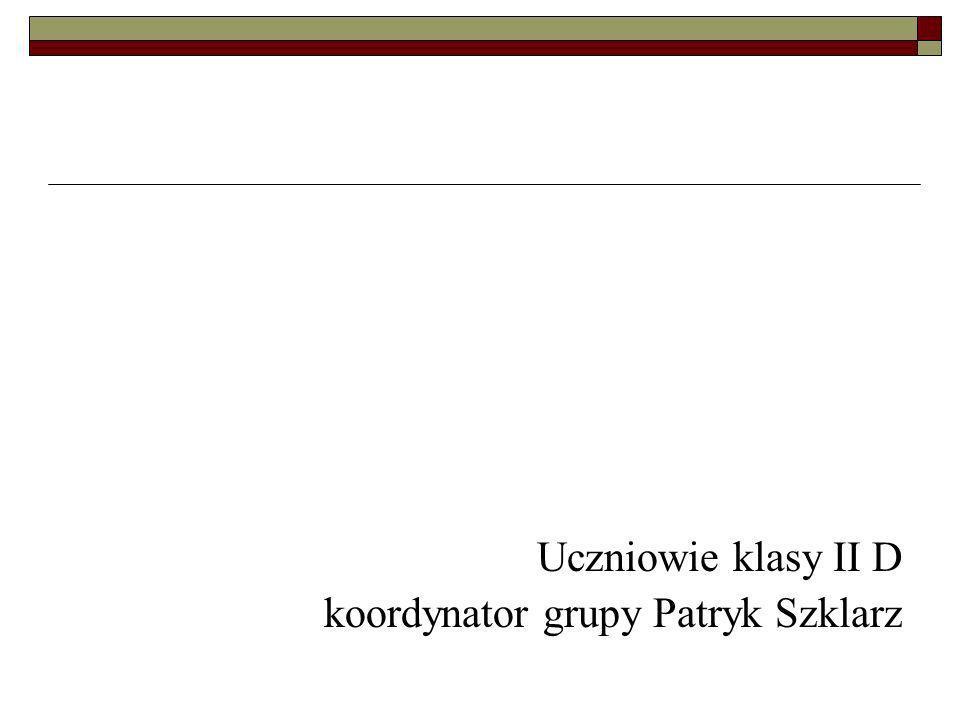 Uczniowie klasy II D koordynator grupy Patryk Szklarz