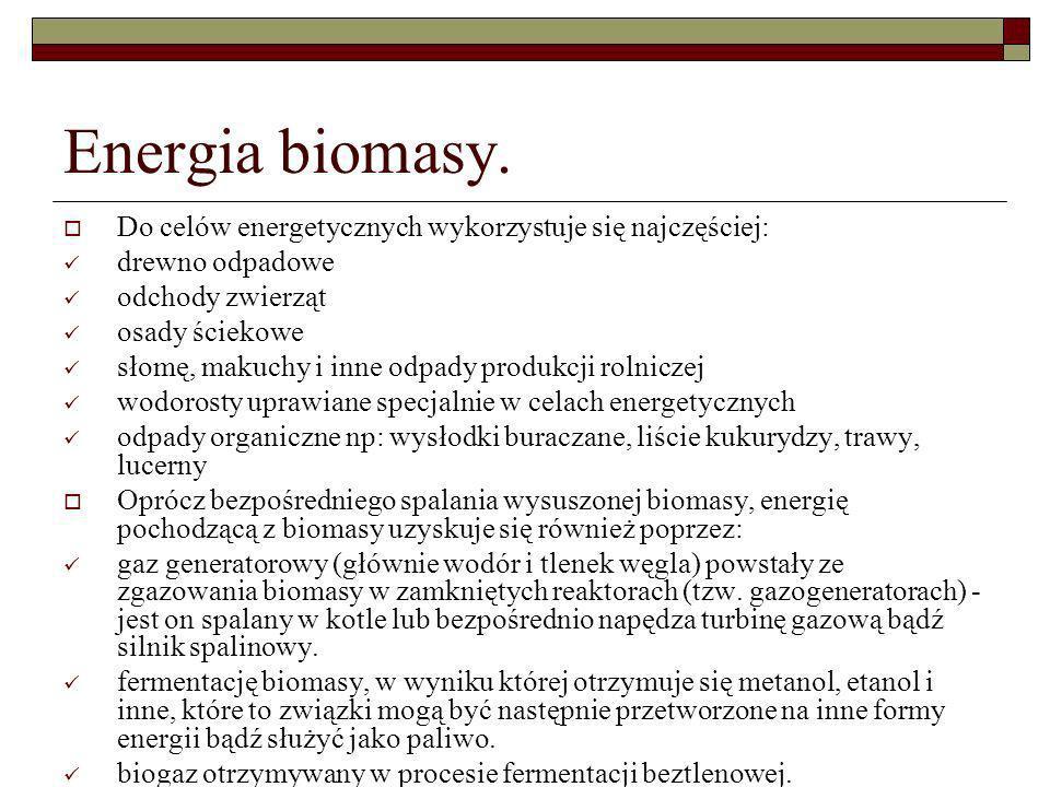 Energia biomasy. Do celów energetycznych wykorzystuje się najczęściej:
