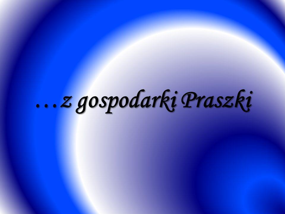 …z gospodarki Praszki