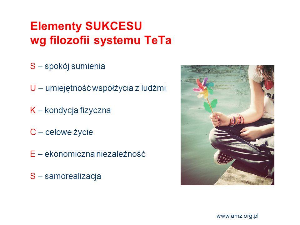 Elementy SUKCESU wg filozofii systemu TeTa