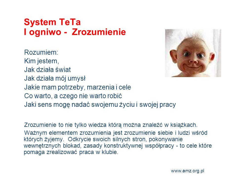System TeTa I ogniwo - Zrozumienie