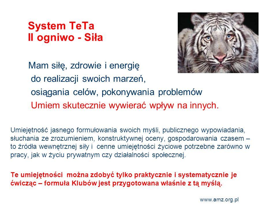 System TeTa II ogniwo - Siła