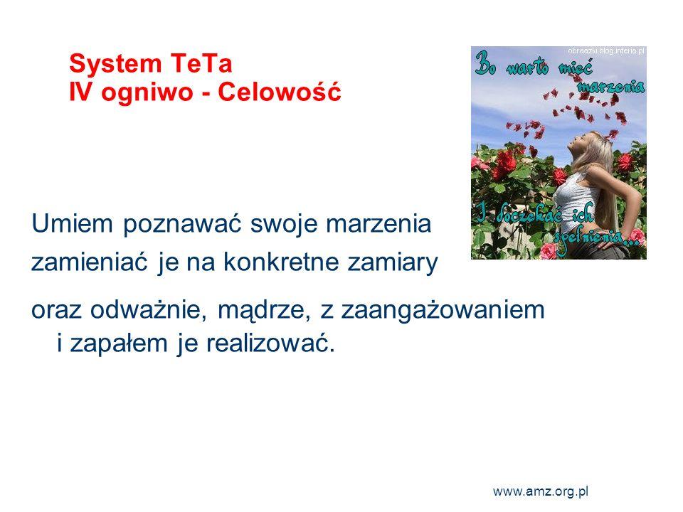 System TeTa IV ogniwo - Celowość