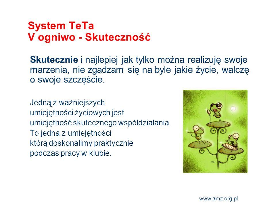System TeTa V ogniwo - Skuteczność