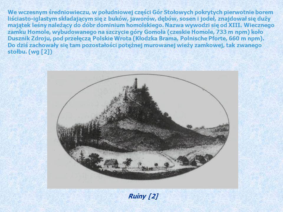We wczesnym średniowieczu, w południowej części Gór Stołowych pokrytych pierwotnie borem